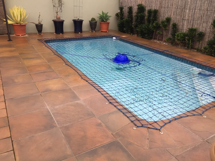 Pool Designer Pavers